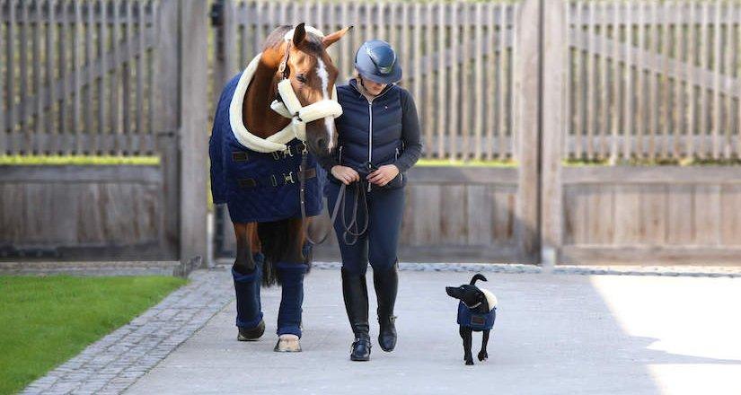 Kentucky - både til hest & hund